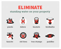 Protect your family, eliminate standing water!